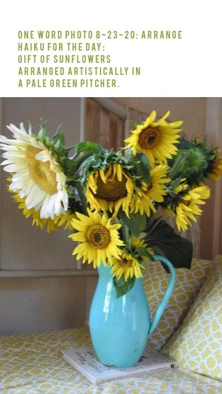 One Word Photo 8-23-20: Arrange Haiku for the Day: Gift of sunflowers arranged artistically in a pale green pitcher.