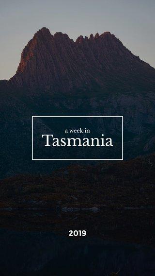 Tasmania 2019 a week in
