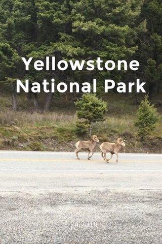 Yellowstone National Park 3.24.2019