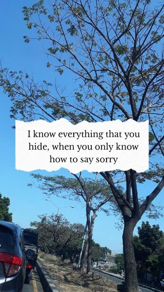 I know everything that you hide, when you only know how to say sorry
