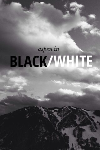 BLACK /WHITE aspen in