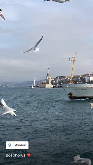 Bosphorus ❤️