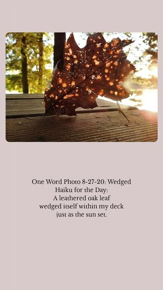 One Word Photo 8-27-20: Wedged Haiku for the Day: A leathered oak leaf wedged itself within my deck just as the sun set.