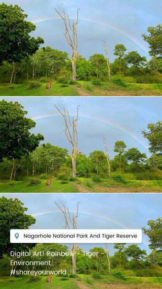 Digital Art! Rainbow - Tiger - Environment #shareyourworld