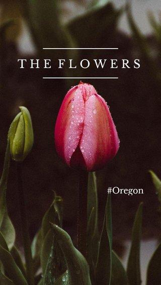 THE FLOWERS #Oregon