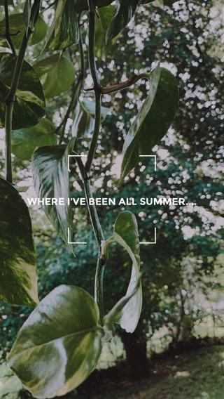 WHERE I'VE BEEN ALL SUMMER....