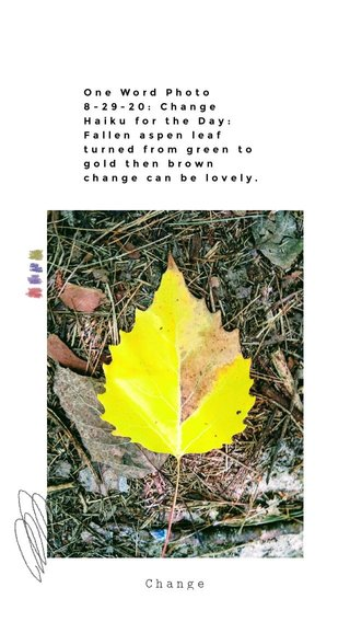 Change One Word Photo 8-29-20: Change Haiku for the Day: Fallen aspen leaf turned from green to gold then brown change can be lovely.