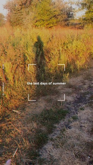 the last days of summer