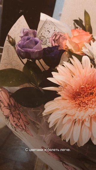 С цветами и болеть легче.