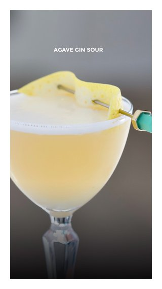 AGAVE GIN SOUR