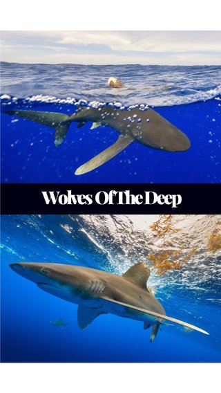Wolves Of The Deep