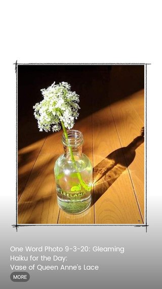 One Word Photo 9-3-20: Gleaming Haiku for the Day: Vase of Queen Anne's Lace gleaming light born from the sun casting a shadow.on...