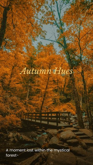 Autumn Hues A moment lost within the mystical forest-