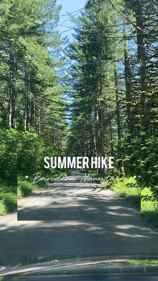SUMMER HIKE • Bandera Mountain •
