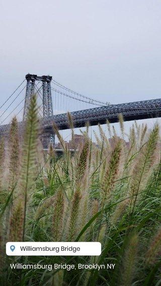 Williamsburg Bridge, Brooklyn NY