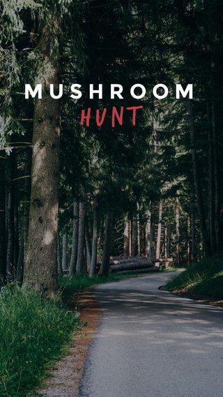 Hunt MUSHROOM