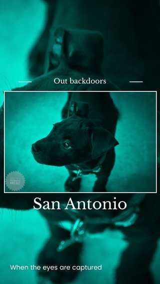 San Antonio Out backdoors When the eyes are captured