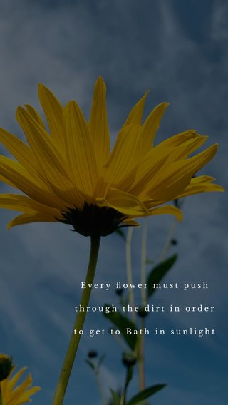 Every flower must push through the dirt in order to get to Bath in sunlight
