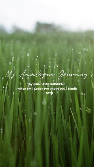 My Analogue Journey by @UNFAMILIARSCENE Nikon FM   Kodak Pro Image 100   35mm ©️ 2020
