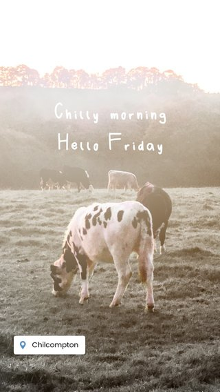 Chilly morning Hello Friday