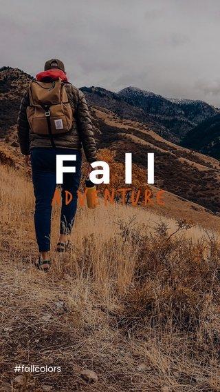 Fall Adventure #fallcolors
