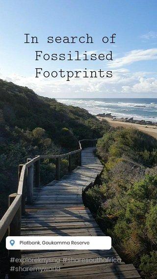 In search of Fossilised Footprints #exploreknysna #sharesouthafrica #sharemyworld