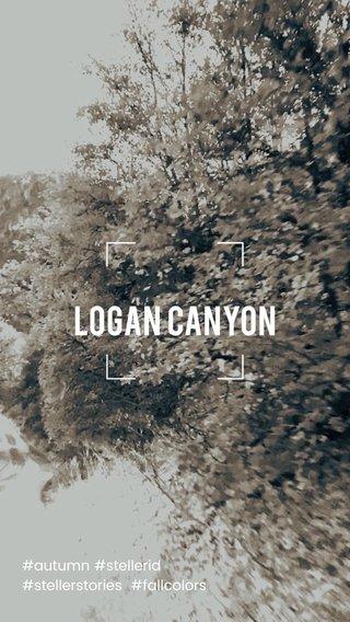 Logan Canyon #autumn #stellerid #stellerstories #fallcolors