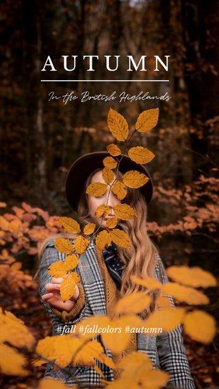 AUTUMN In the British Highlands #fall #fallcolors #autumn