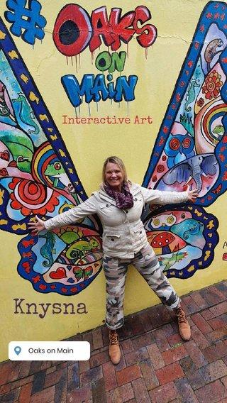 Knysna Interactive Art