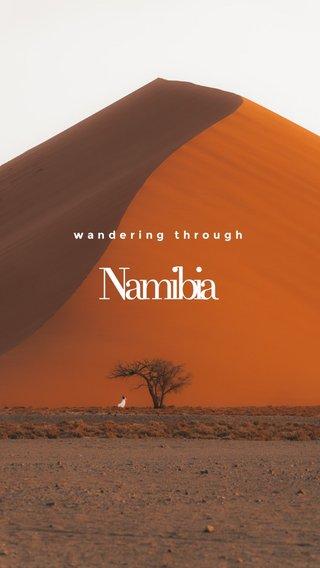 Namibia wandering through