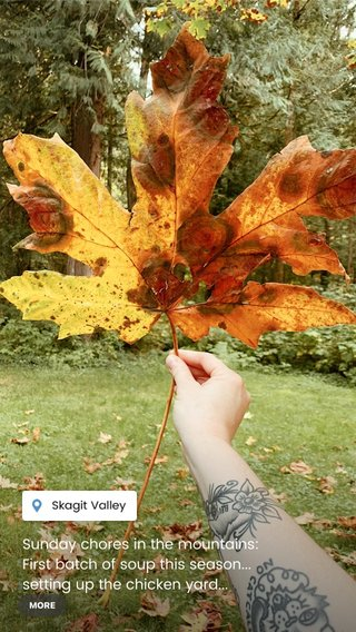 Sunday chores in the mountains: First batch of soup this season... setting up the chicken yard... exhausting a certain puppy... stacking firewood... finding the crunchiest leaf to step on and my heart is so full 🍁 what does your Sunday look like?