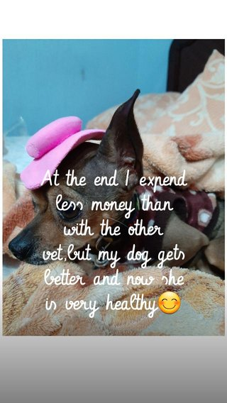 At the end I expend less money than with the other vet,but my dog gets better and now she is very healthy😊