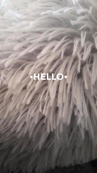 •HELLO•