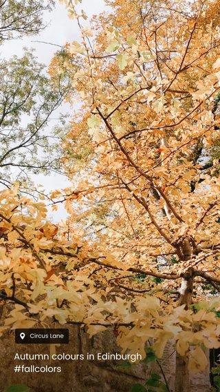 Autumn colours in Edinburgh #fallcolors