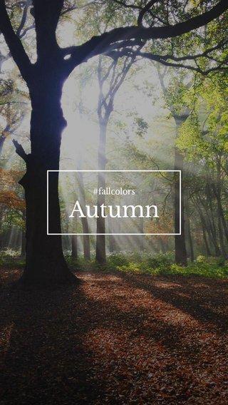 Autumn #fallcolors