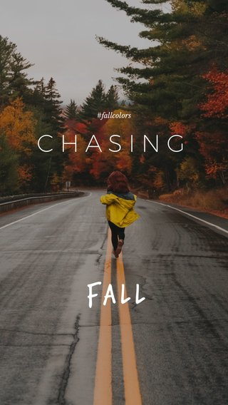 Fall CHASING #fallcolors
