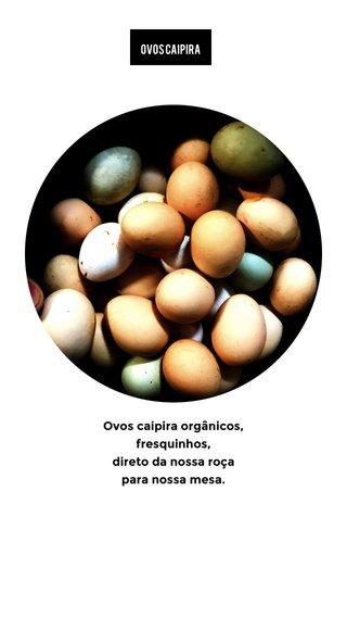 Ovos caipira orgânicos, fresquinhos, direto da nossa roça para nossa mesa. Ovos caipira