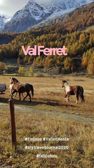 Val Ferret #Foliage #ValledAosta #mytraveljournal2020 #fallcolors FOLIAGE IN