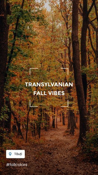 TRANSYLVANIAN FALL VIBES #fallcolors