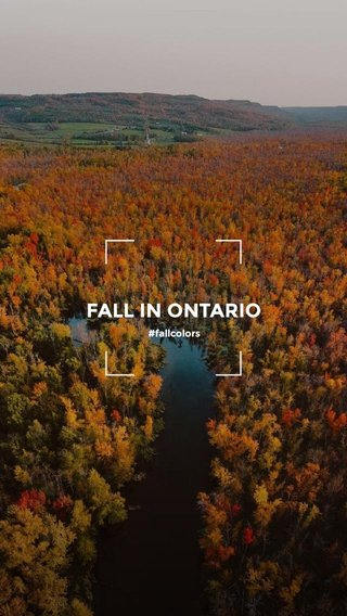 FALL IN ONTARIO #fallcolors
