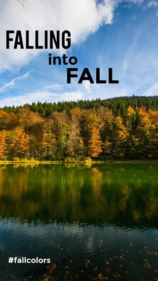 FALL Falling into #fallcolors