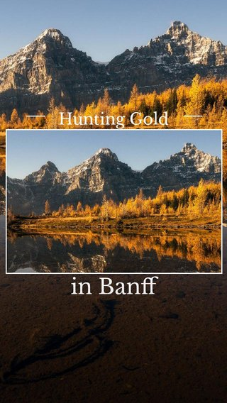 in Banff Hunting Gold