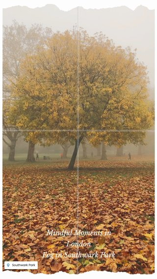 Mindful Moments in London Fog in Southwark Park