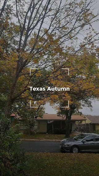 Texas Autumn