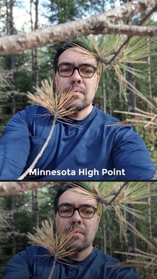 Minnesota High Point