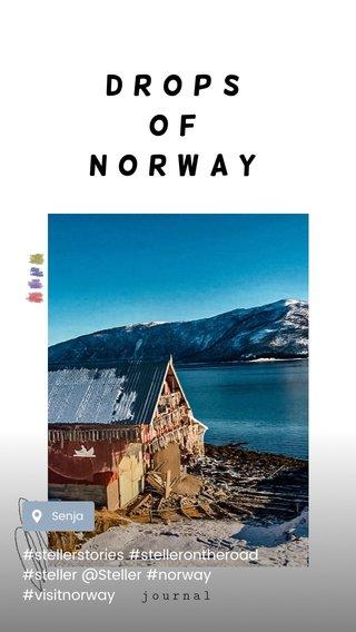 DROPS OF NORWAY #stellerstories #stellerontheroad #steller @Steller #norway #visitnorway journal