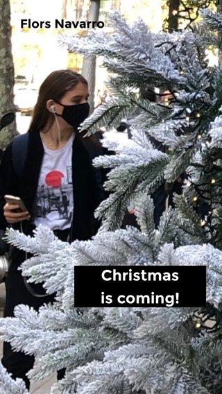 Christmas is coming! Flors Navarro