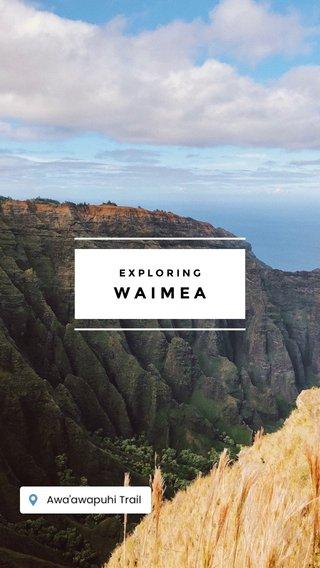 WAIMEA EXPLORING