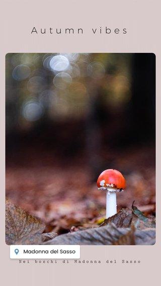 Autumn vibes Nei boschi di Madonna del Sasso