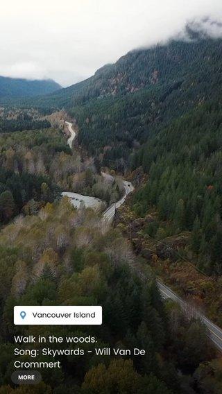 Walk in the woods. Song: Skywards - Will Van De Crommert #mountains #woods #drone #cinematography